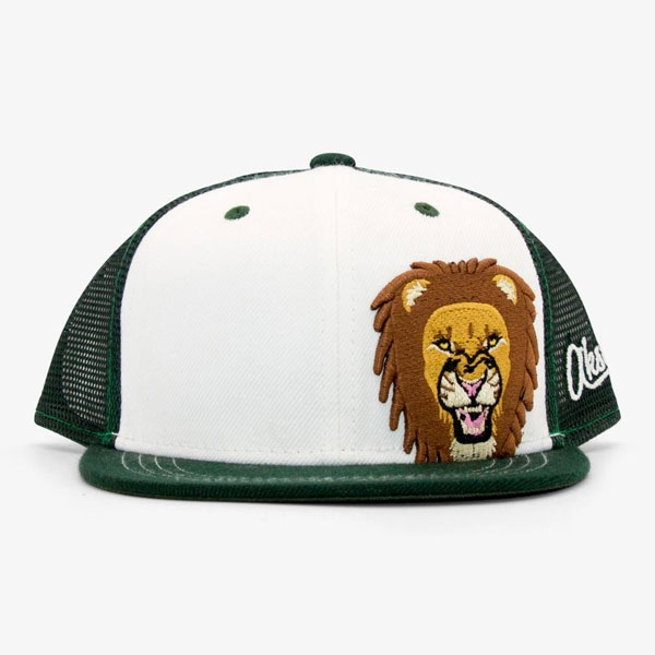 LION YOUTH BASEBALL HAT